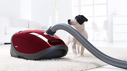 Cat And Dog Hoover Milee